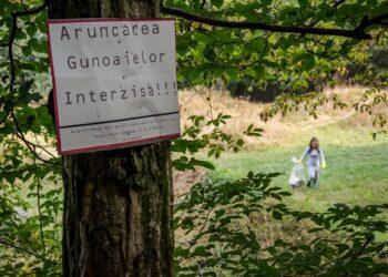 aruncat gunoaie interzis foto lets do it romania