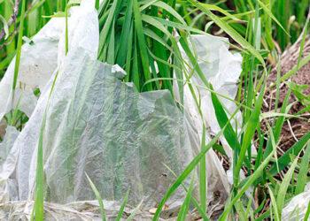 plastic bag 800x350 1